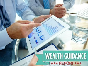 Financial planning with the Wealth Guidance Report