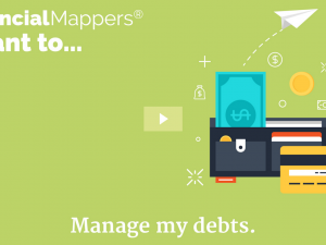 Debt Management and Wealth Mapping with Financial Mappers